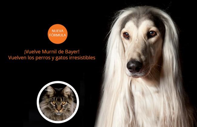 Murnil, complemento alimenticio para perro y gato de Bayer