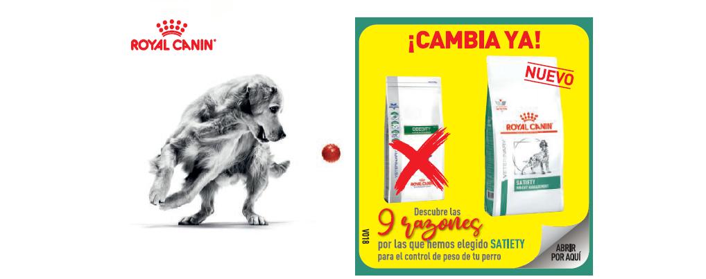 9 razones por las que Royal Canin ha elegido Satiety para el control del peso de tu perro