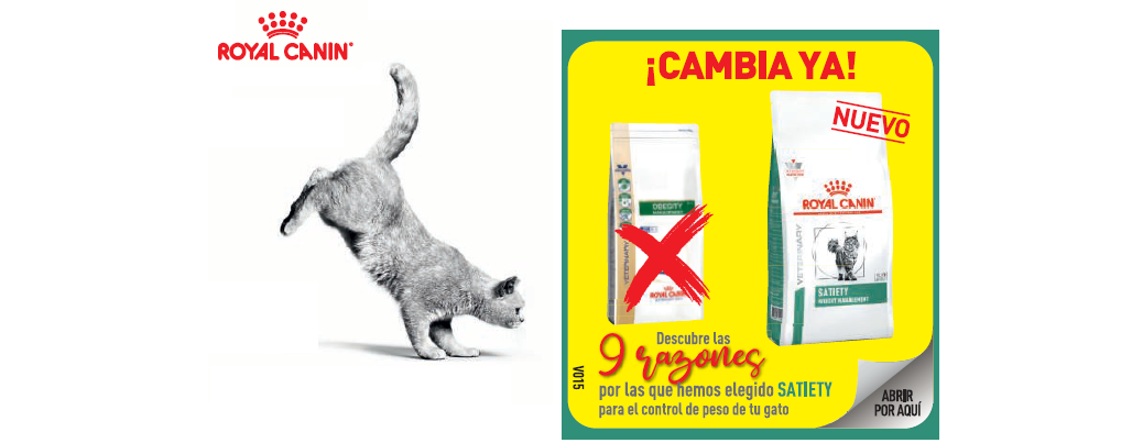9 razones por las que Royal Canin ha elegido Satiety para el control del peso de tu gato