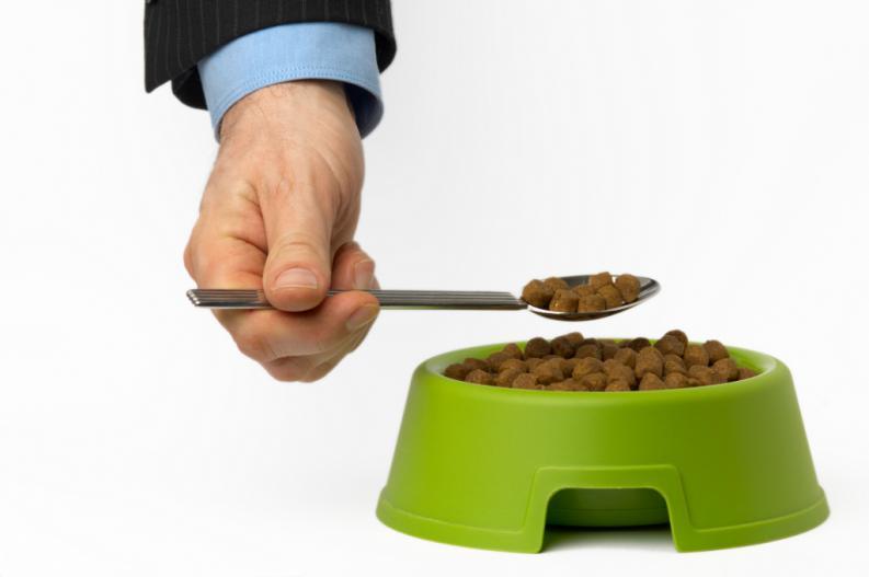 ¿Probarías la comida de tu perro? ¡Nosotros sí!